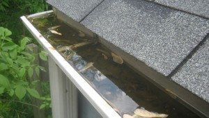 Clogged Gutter Water